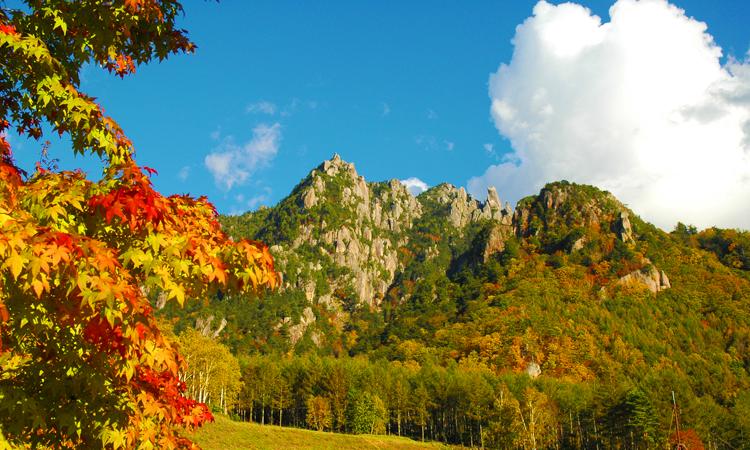 山 場 がき 公園 みず 自然 キャンプ