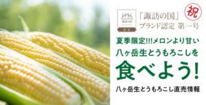 HAMARA FARM「八ヶ岳生とうもろこし」直売情報 2020