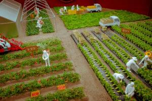 """工場見学に農業体験…""""野菜の会社""""を体験するカゴメ野菜生活ファーム富士見オープン"""